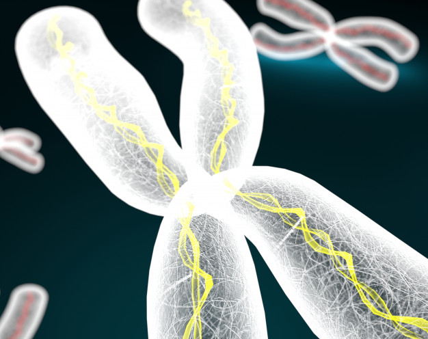 Adrenoleucodistrofia ligada al cromosoma X, forma cerebral