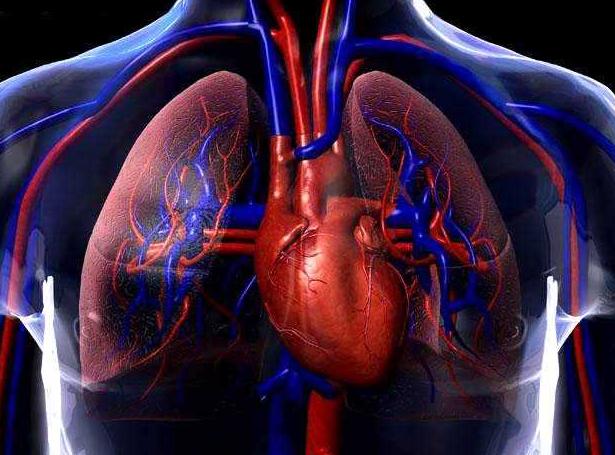 cardiopatia congenita, sindrome holt-oram