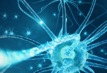 encefalopatía mioneurogastrointestinal