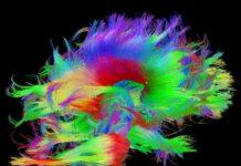 trastorno neurometabólico