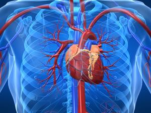 miocardiopatia