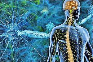 miopatía miotubular ligada al X