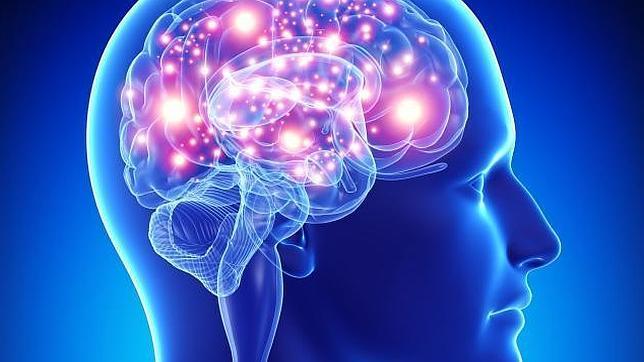 esclerosis múltiple, enfermedades neurodegenerativas, software