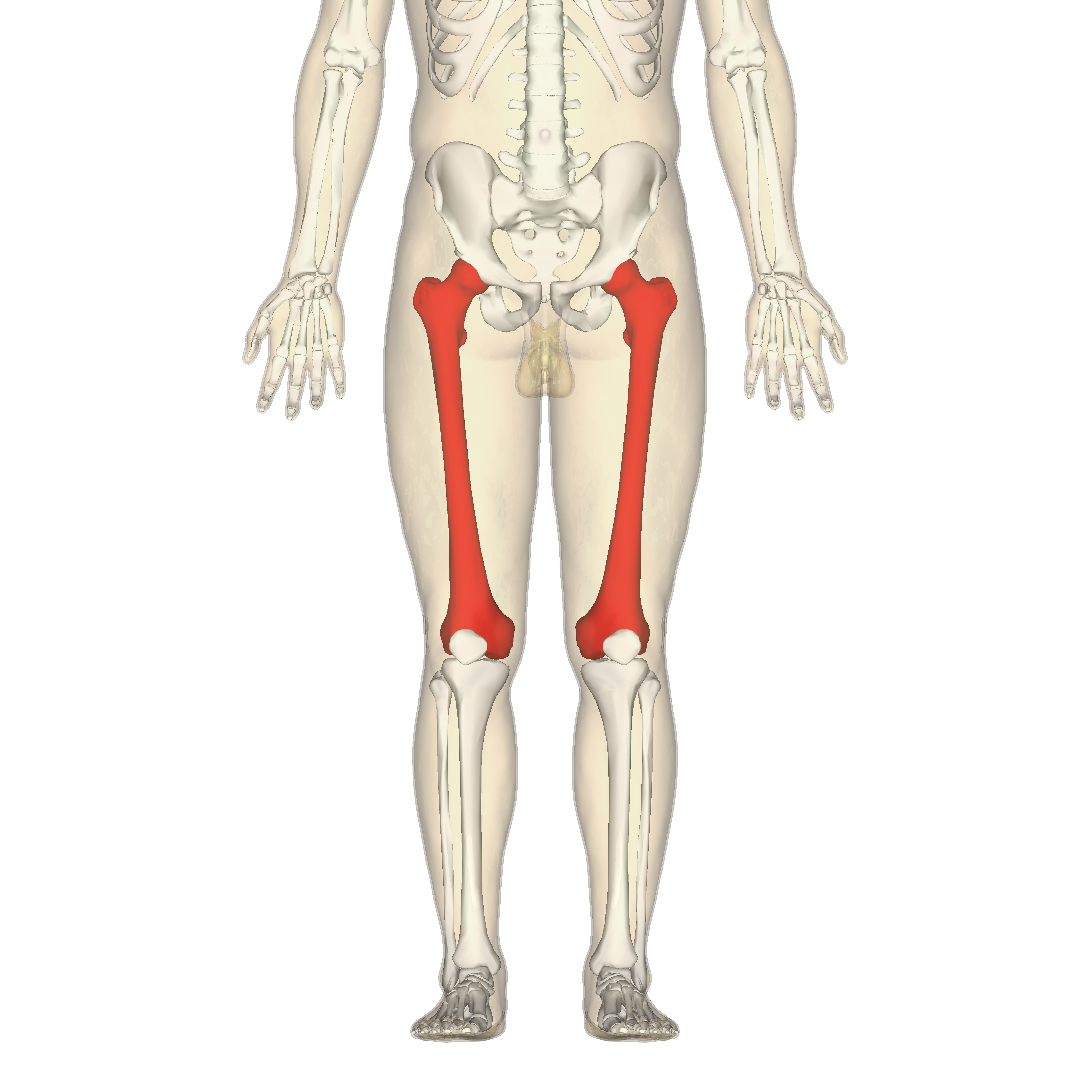 Síndrome angio-osteo-hipertrófico