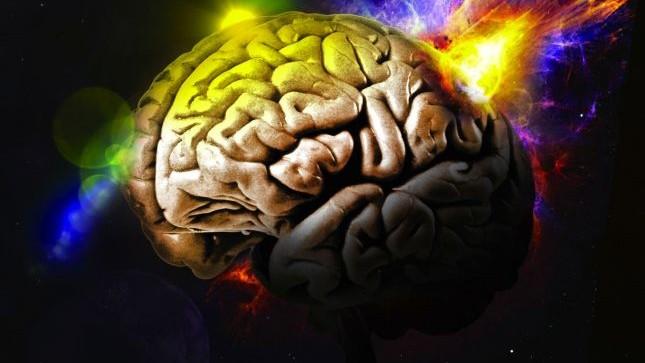 cerebro, síndrome Lennox-Gastaut, síndrome Dravet