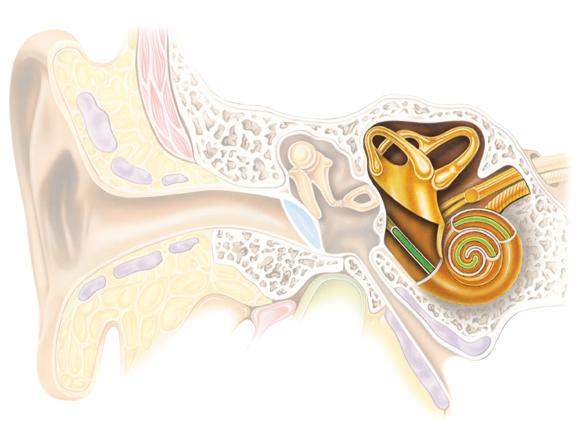 Pérdida auditiva - insensibilidad a la aldosterona de la glándula salivar, familiar