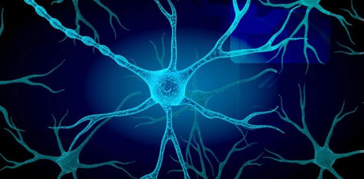 esclerosis múltiple, tratamiento, COVID-19