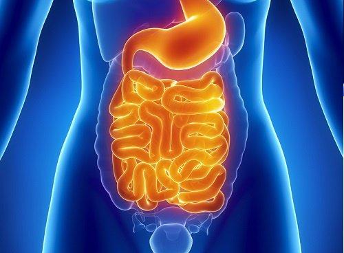 Síndrome de megavejiga - microcolon - hipoperistaltismo intestinal