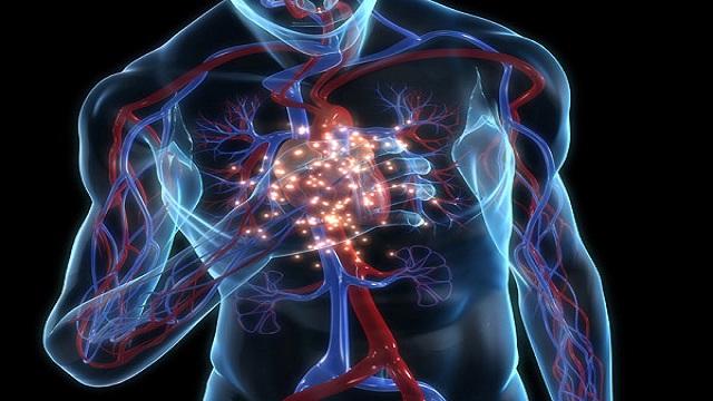 Conexiones atrioventriculares trenzadas