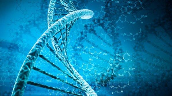 Deficiencia de guanidinoacetato metiltransferasa