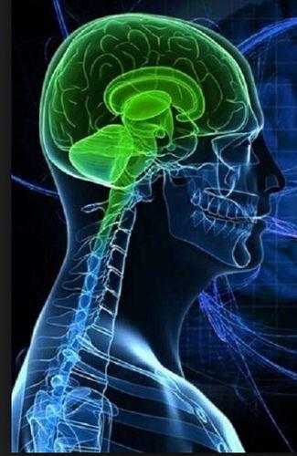 Síndrome cerebro-óculo-nasal