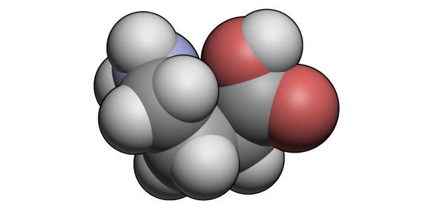 Deficiencia de ácido gamma aminobutírico transaminasa