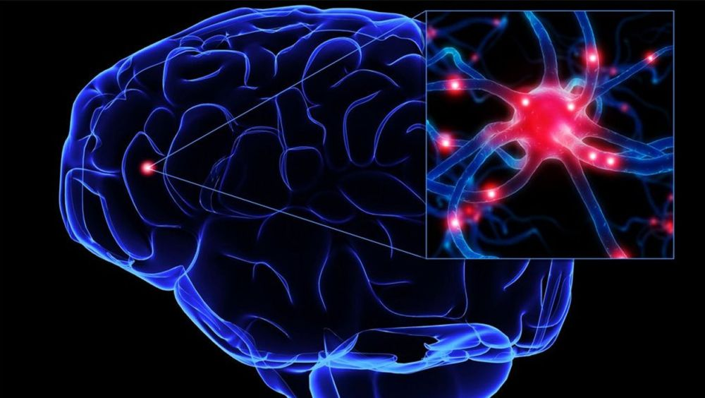 Esclerosis múltiple, ejercicio