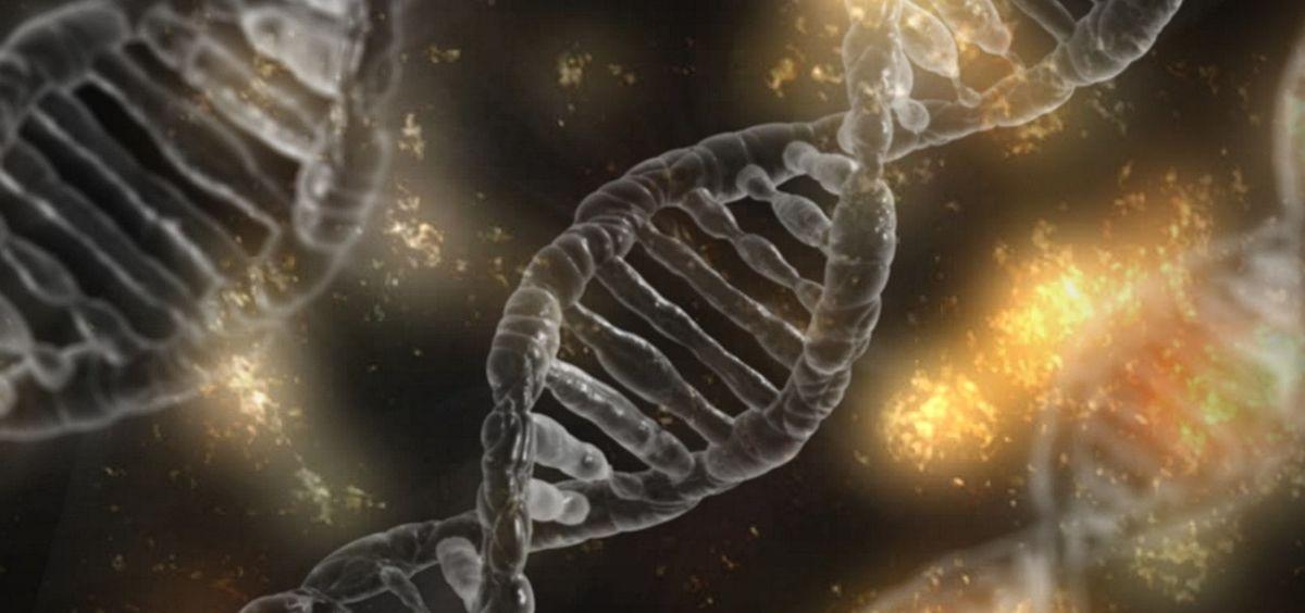 síndrome de hipoventilación central congénita, enfermedad de Hirschsprung, prueba genética