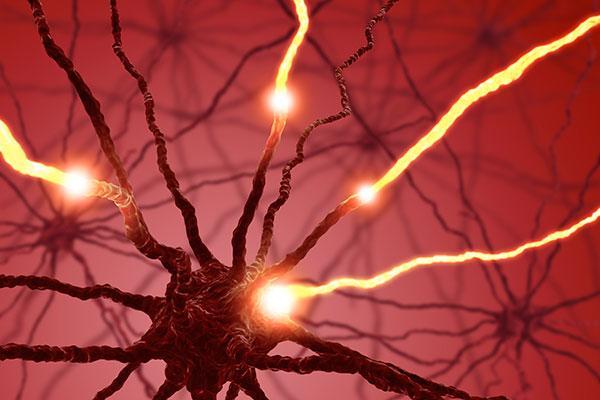 Esclerosis múltiple, molécula IL-17