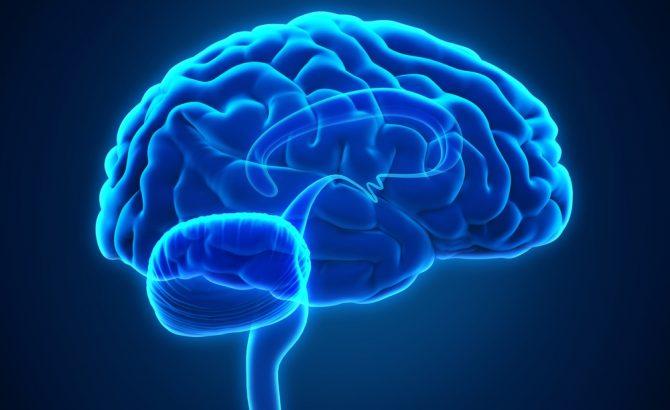 Mioclonía cortical