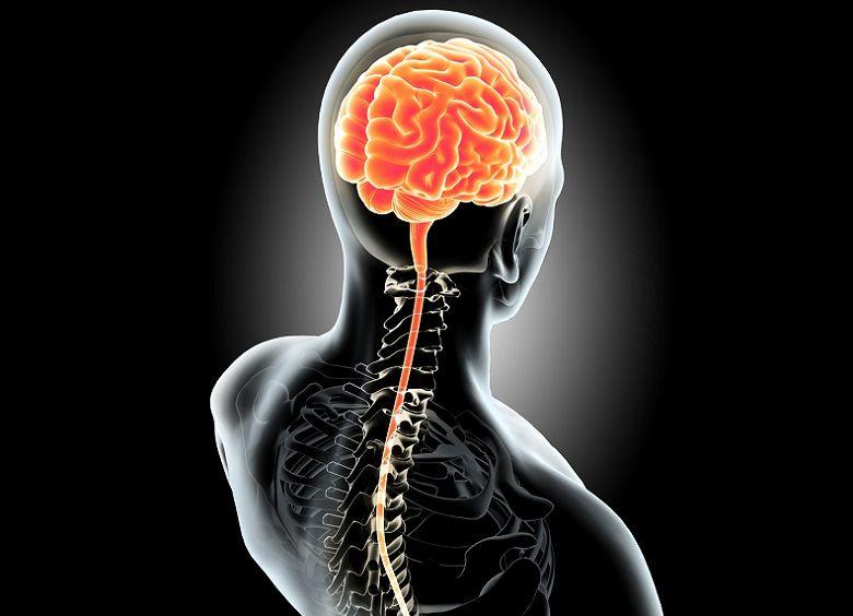 sistema nervioso central, COVID-19