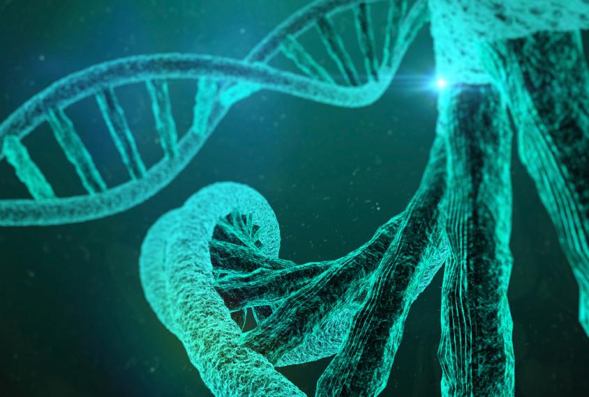 Nueva comprensión de qué causa la esclerosis tuberosa podría mejorar el tratamiento