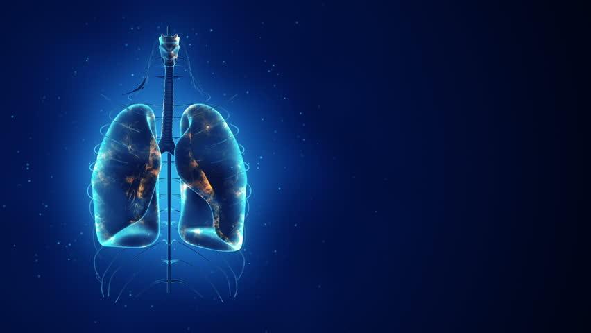 esclerosis sistemica, enfermedad pulmonar intersticial, Boehringer Ingelheim