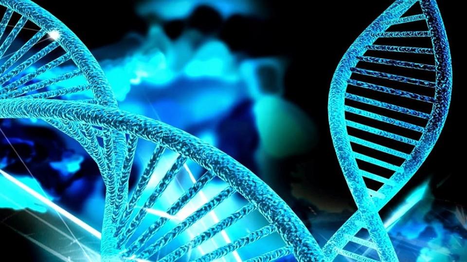 Una mutación genética, causa de una nueva miopatía congénita