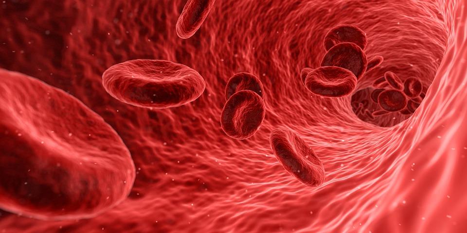 Hemofilia A, BioMarin Pharmaceutical