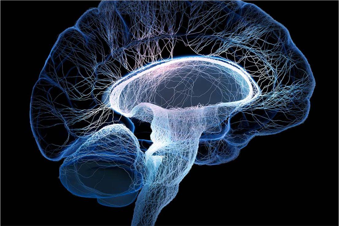Encefalopatías