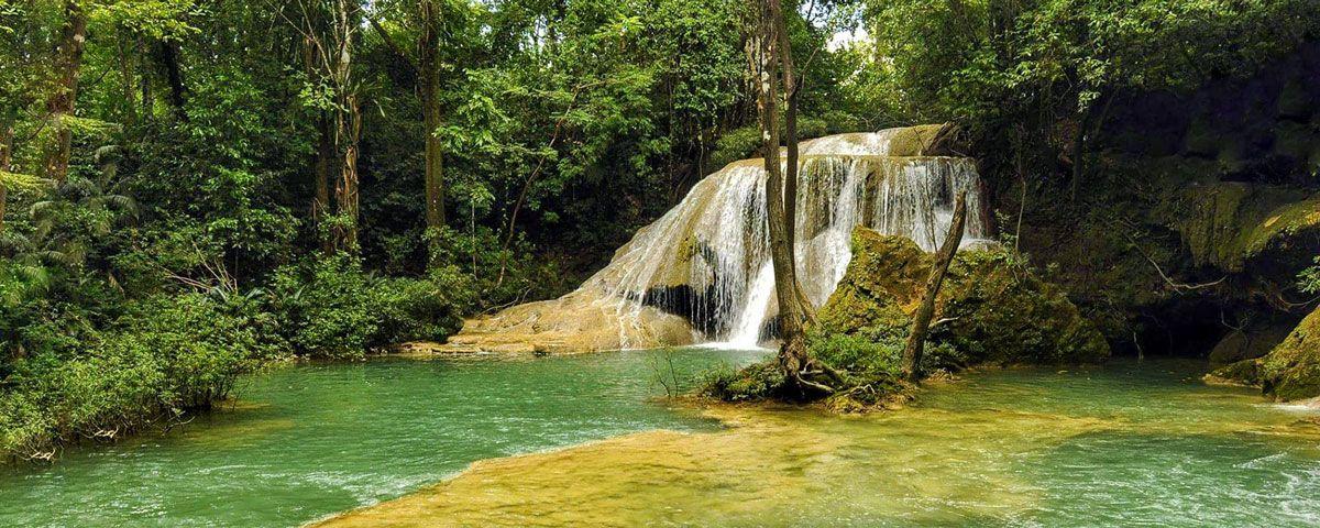 Expertos analizan situación del dengue en Chiapas
