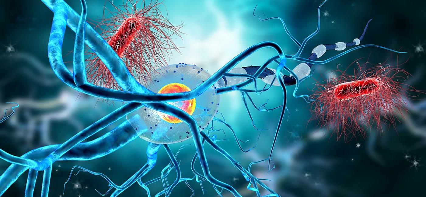 distrofia muscular de Duchenne, terapia génica