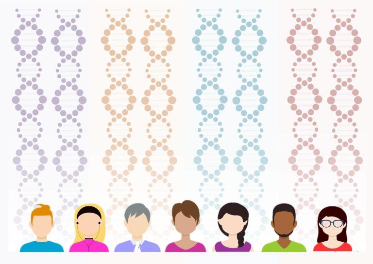 Cómo informar a los participantes de proyectos de investigación genómicos de la existencia de nuevos resultados sobre su perfil genético