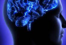 Esclerosis múltiple, células madre