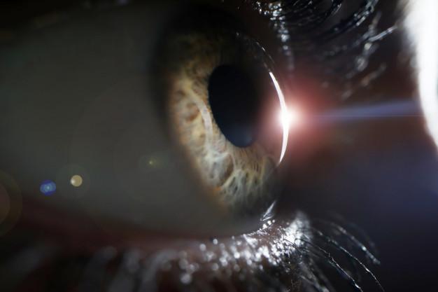 diagnóstico, inteligencia artificial, Glaucoma