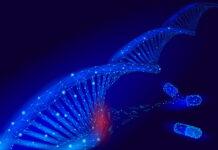 terapia génica, distrofia muscular de cinturas