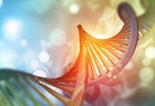 gen TRAF7, síndrome TRAF7