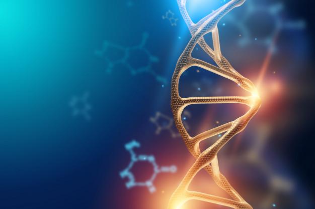 CRISPR Therapeutics, terapias CRISPRCas9, trastornos genéticos, cáncer