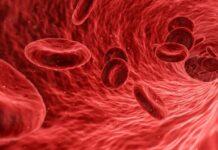 bevacizumab, fármaco, tratamiento, telangiectasia hemorragica hereditaria