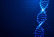 tirosinemia, trastorno, CRISPR