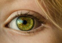 retinosis pigmentaria, protesis de retina