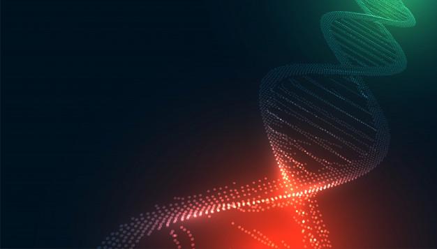Charcot-Marie-Tooth News, se realizó un estudio que descubrió tres nuevas mutaciones en el gen GJB1