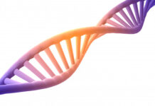estructura, proteína, ADN