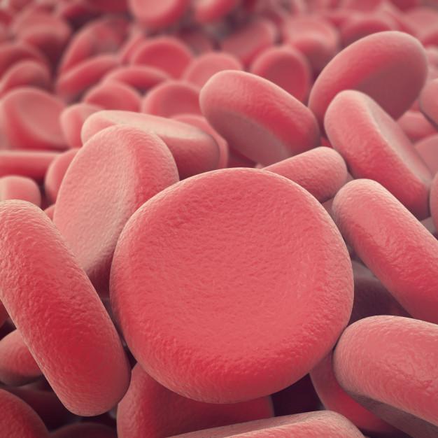 FDA, Venclexta Combo, leucemia mieloide aguda