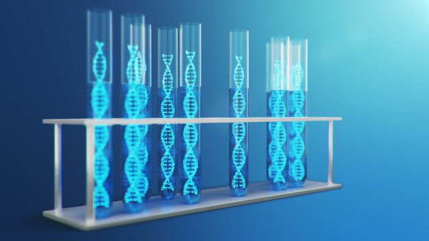 SRP-9003, una terapia génica para distrofia muscular de cinturas tipo 2E
