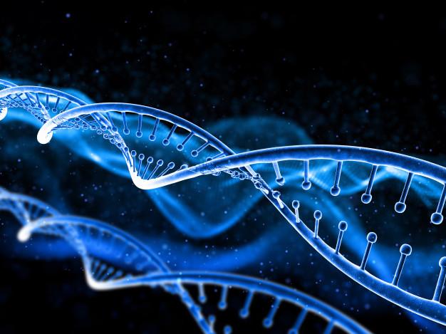 nuevos genes afiliados a la enfermedad de Charcot Marie Tooth