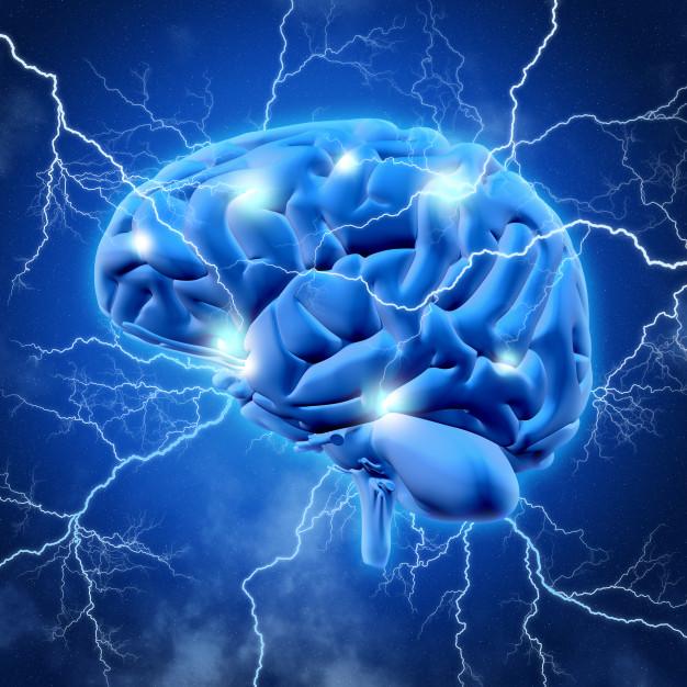 ARNs no codificantes, estrés oxidativo, enfermedades neurodegenerativas