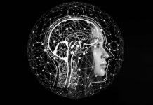 Investigadores descubren causa genética malformación de Chiari