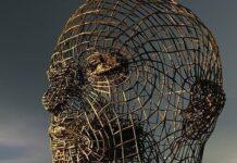 hallazgo mitocondrias hiperactivas responsables cánceres cerebrales del glioblastoma
