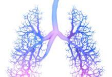 proteína osteopontina, cicatrización pulmonar esclerodermia