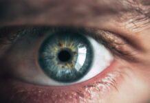 terapia génica dirigida a ceguera hereditaria
