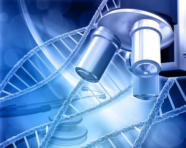 diferencias en la actividad de varios genes pueden impulsar la esclerodermia