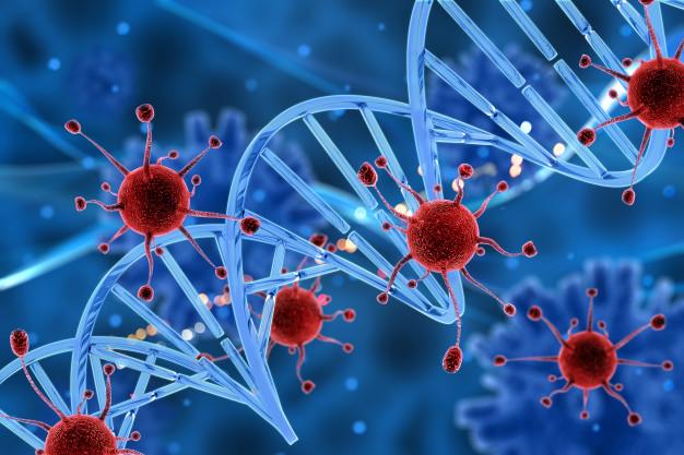 investigación identifica precursores genéticos del rabdomiosarcoma