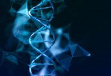 AVR-RD-04 para la cistinosis recibió la designación de fármaco huérfano de la comisión europea